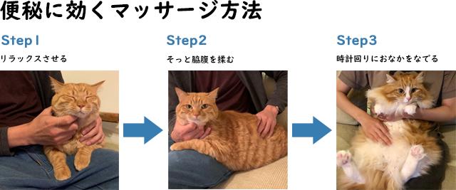 でない 猫 うんち