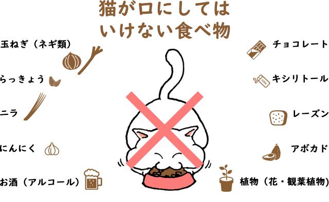 子猫 うんち が ゆるい 子猫の病気じゃない下痢・軟便の治し方とは?