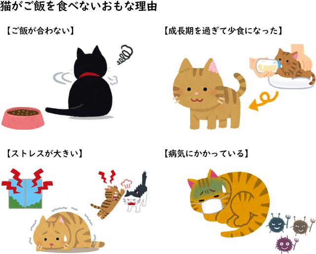 子猫 ご飯 食べ ない 猫がご飯(餌)を食べないときの対処方法